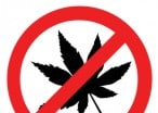 Marijuana Is Illegal, And Your Children Should Be More Important Than Your High
