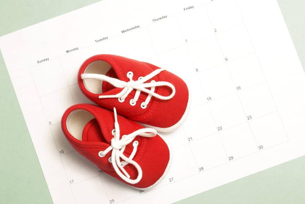 pregnancy planning