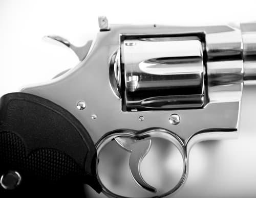 guns in schools