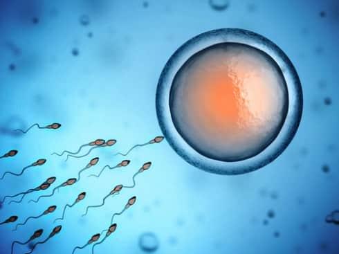 I�m Donating Sperm To My Single Lady Friend