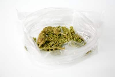 pot in bag