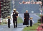 Amish Family To Use 'Natural Medicine' Over Chemo For Dying Daughter, Appeals Court Says Hell No