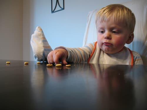 toddler cheerios