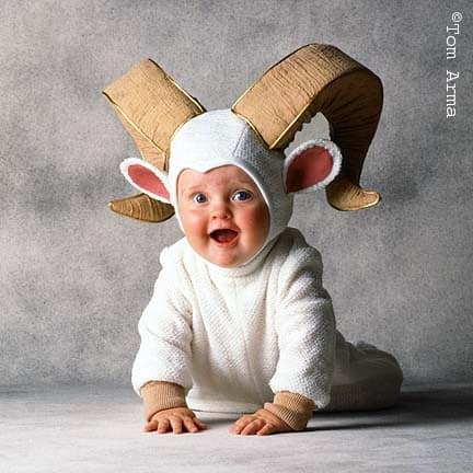 Find great deals on eBay for baby animal outfits. Shop with confidence.