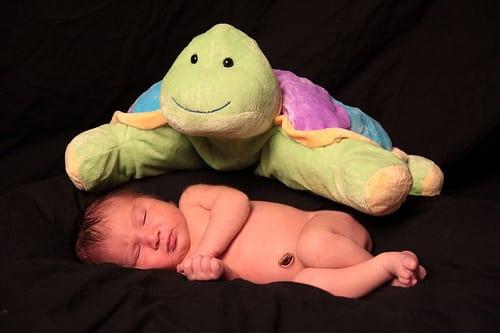 creepy-turtle-baby