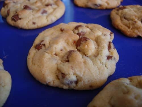 cookie lady shut down