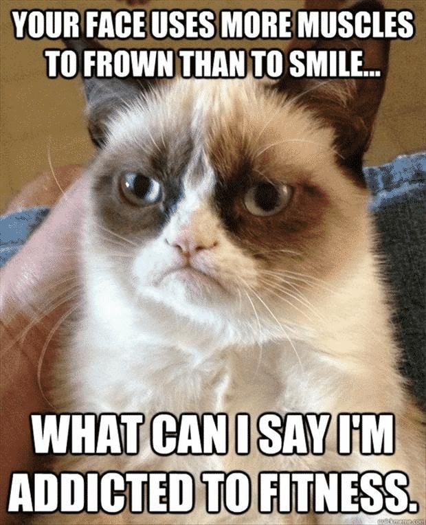 Grumpy-Cat-Addicted-to-Fitness-Meme