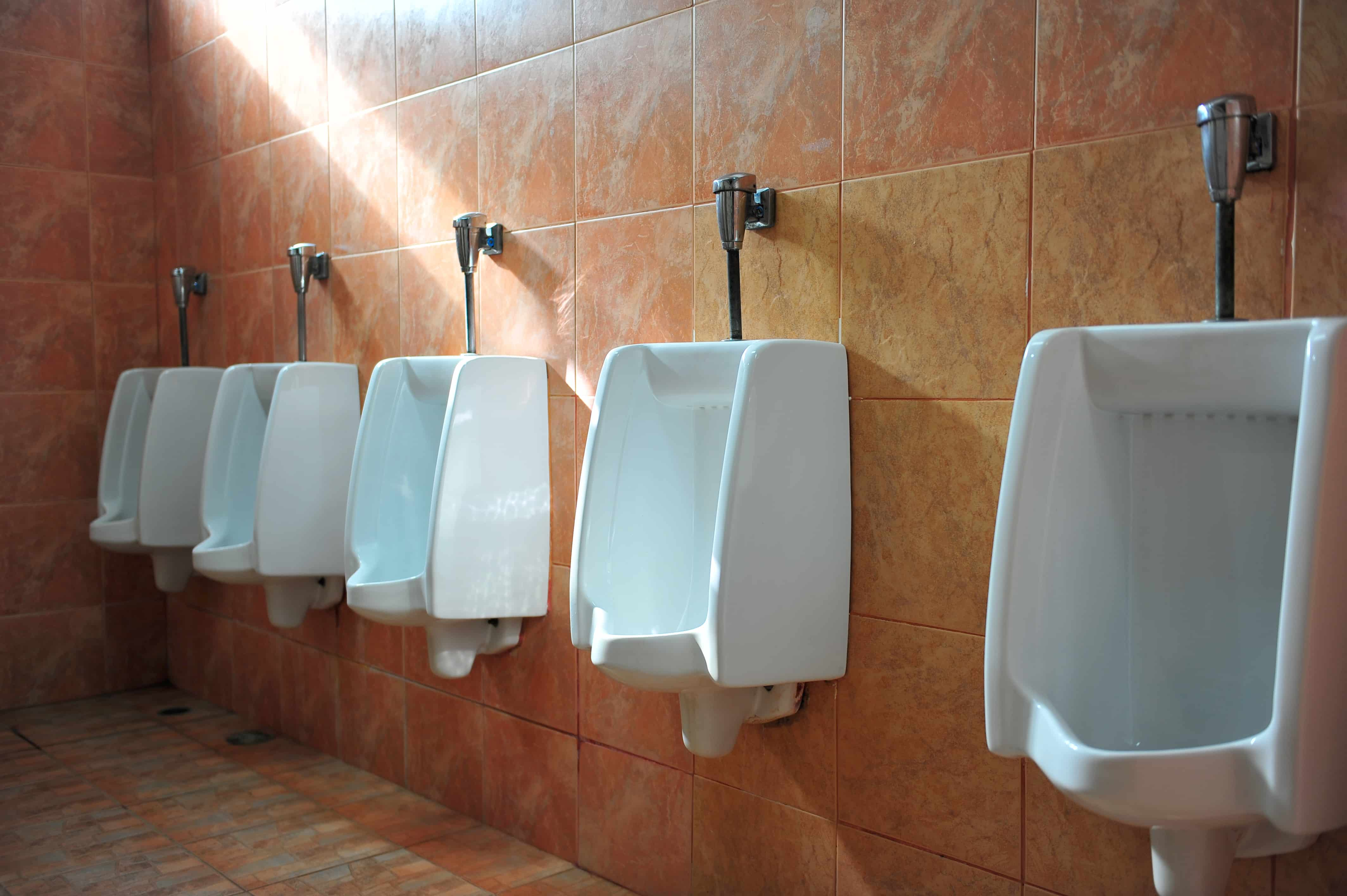 Elementary school bathroom urinal - People I Don T Even Know What To Do With The World These Days I Really Don T Case In Point A Teacher In Florida Was Arrested After She Made A
