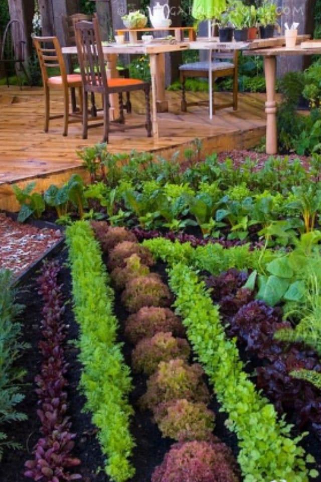 pinterest ready garden