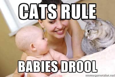 cats rule babies drool