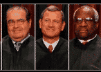 The #DrHobbyLobby Hashtag Captures The 13 Best Tweets About SCOTUS� Latest Ruling