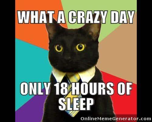 Get That Cat Outta Here Mem