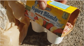 gerber-yogurt-and-maggots