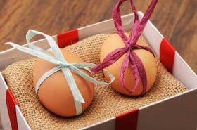 gift eggs