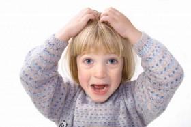 little-girl-head-lice