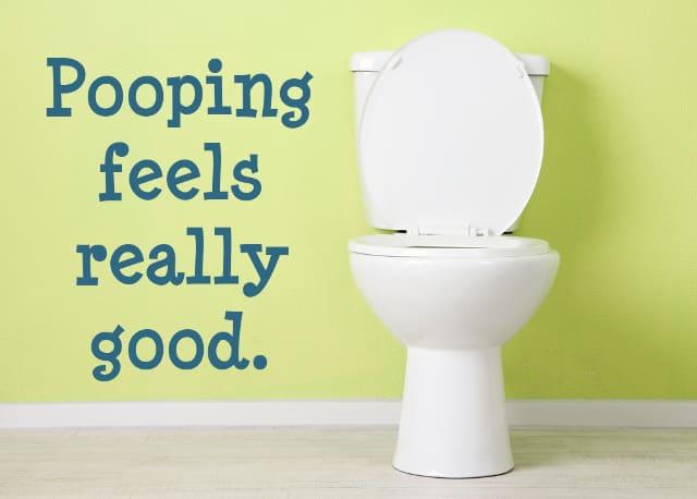 toilet-in-bathroom-modern