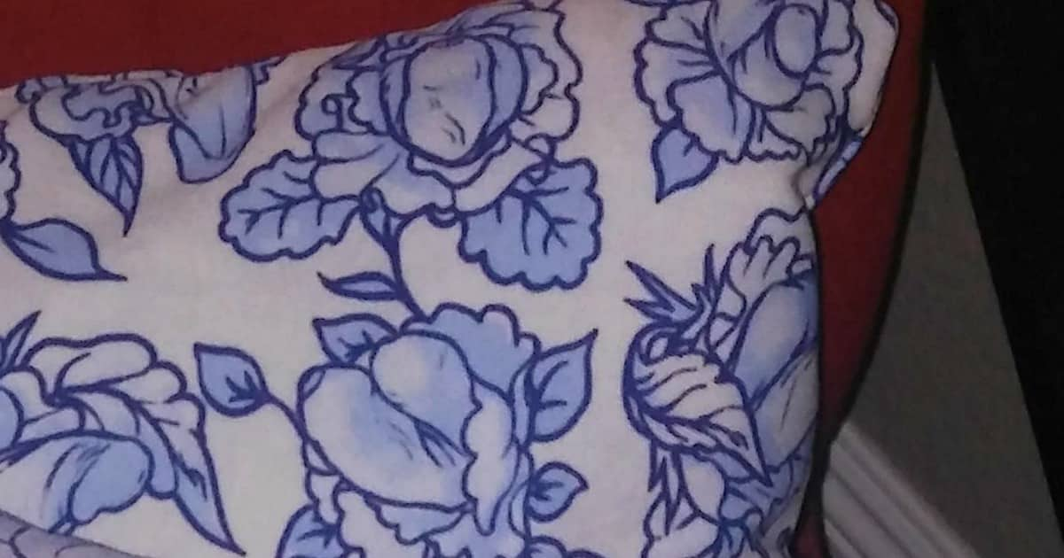 Throw Pillows Ralph Lauren : Mom Accidentally Buys NSFW Throw Pillows and It s Too Funny NOT to Look