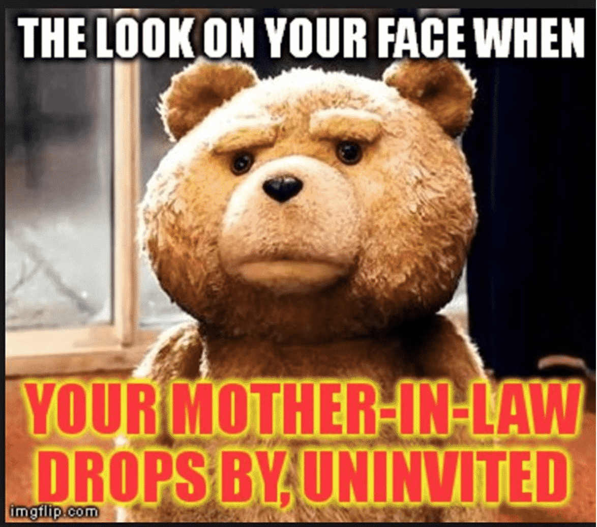 Screen Shot 2017 04 11 at 9.55.52 AM funny mother in law memes