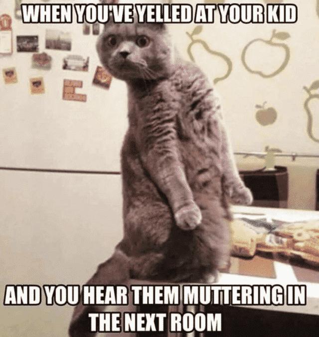 parenting memes don't you talk back