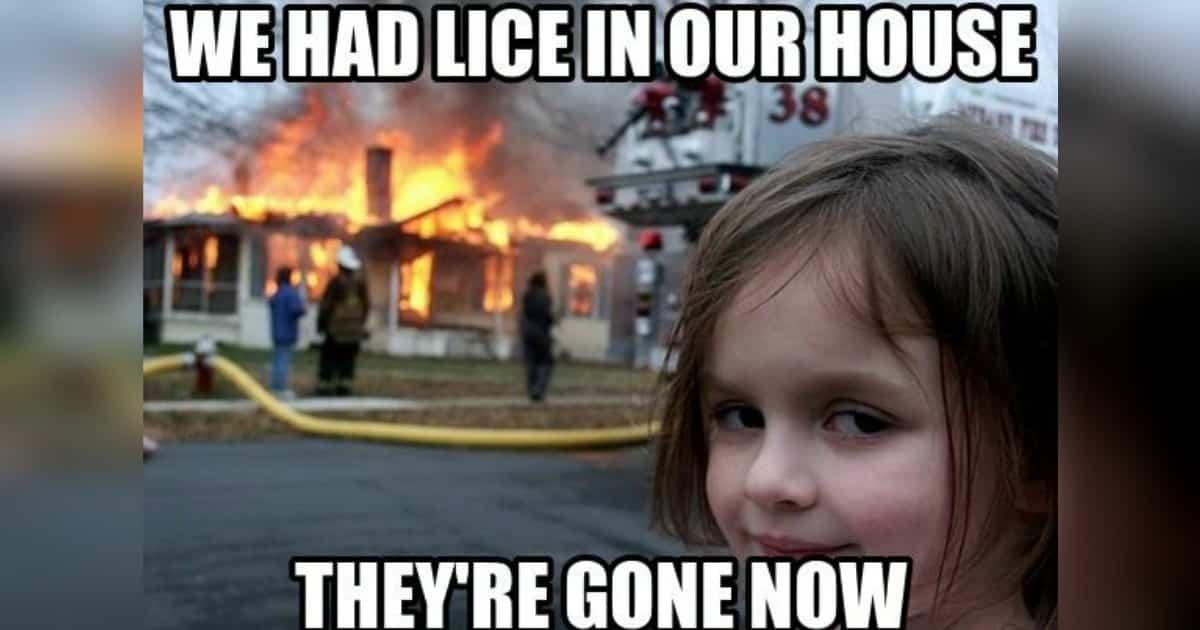 head lice meme