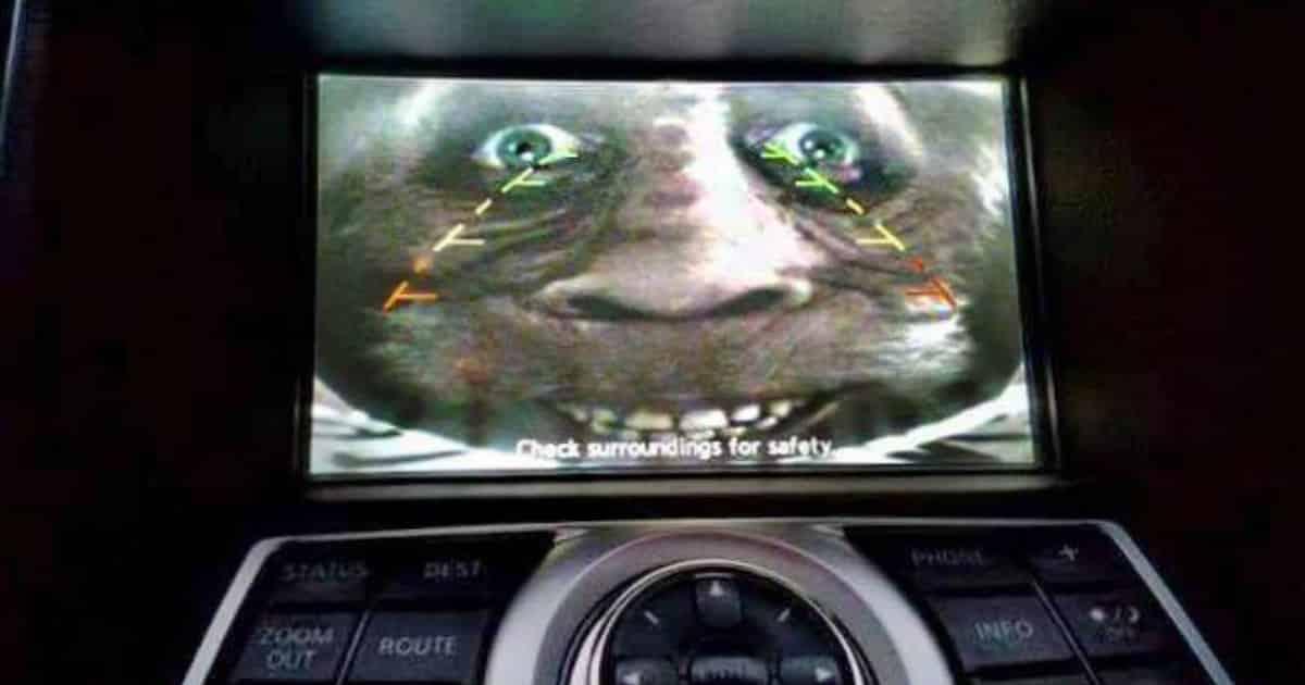 back-up camera prank