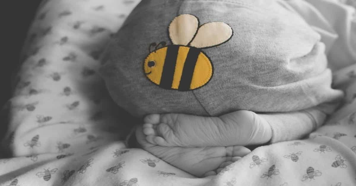 bee maternity photoshoot