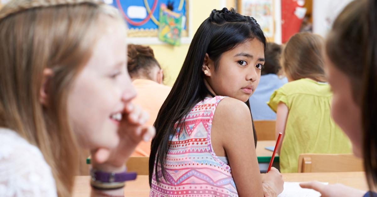 School Bully Traits