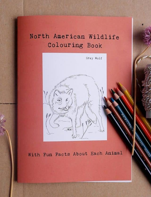 Coloring Books, Coloring, Animals