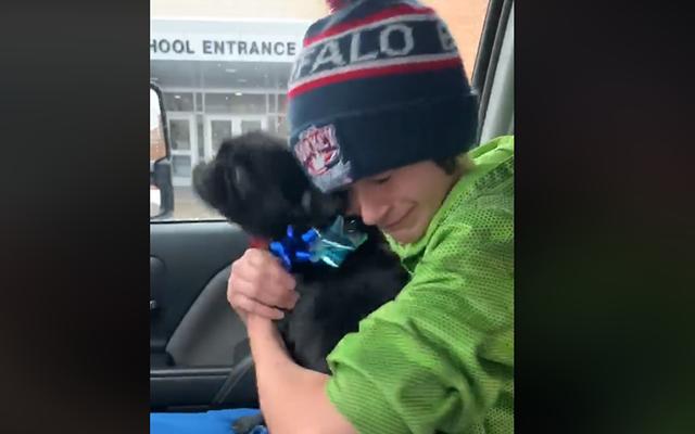 Boy reunited lost dog Viral Video still