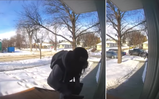 Ring Camera Package Thief