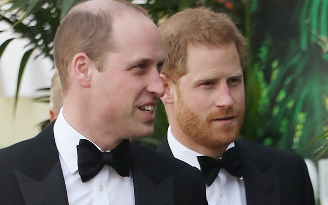 Prince Harry Prince William not on good terms since Harry Meghan Markle stepped back UK duties